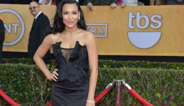 Naya Rivera Donna Karan Dress