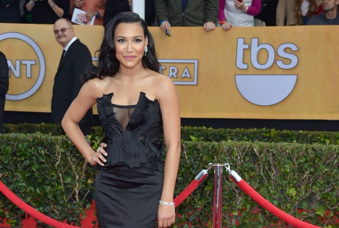 Naya Rivera Donna Karan Dress